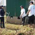 Voluntários dinamizam Horta Pedagógica